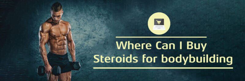 where-can-i-buy-steroids-for-bodybuilding-800x267 (1)